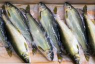 Care e cel mai cancerigen pește. Nu mai cumpărați niciodată!